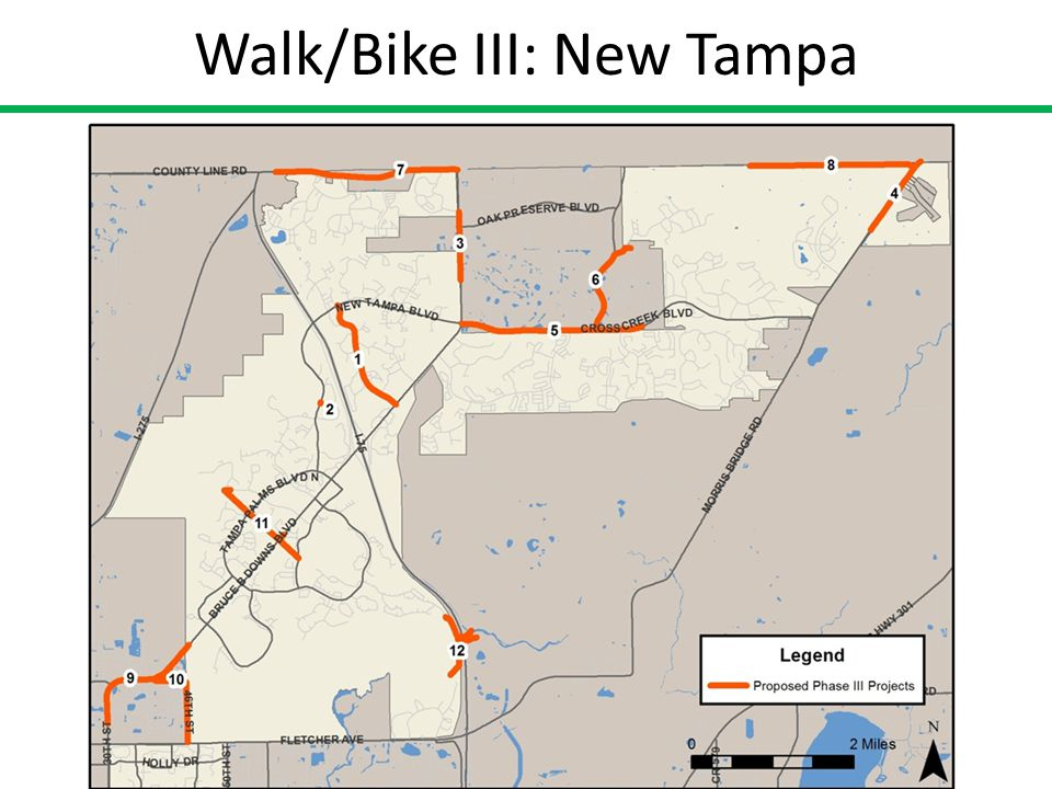 Walk/Bike III: New Tampa