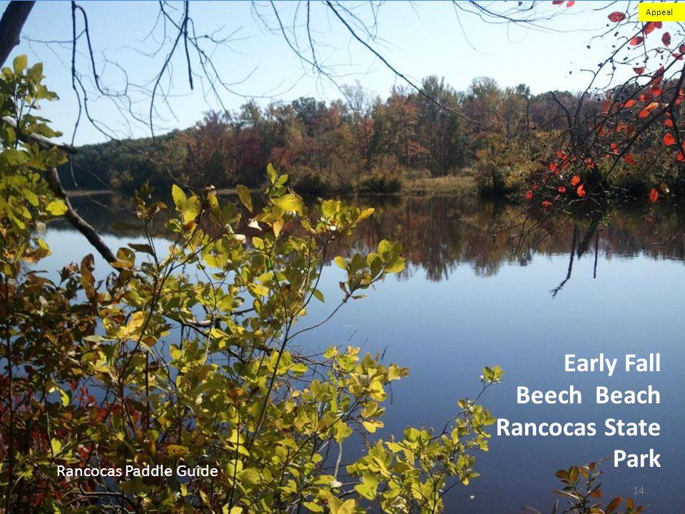 Early Fall Beech Beach Rancocas State Park Rancocas Paddle Guide