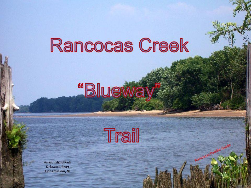 Rancocas Creek Blueway Trail Rancocas Paddle Guide Amico Island Park