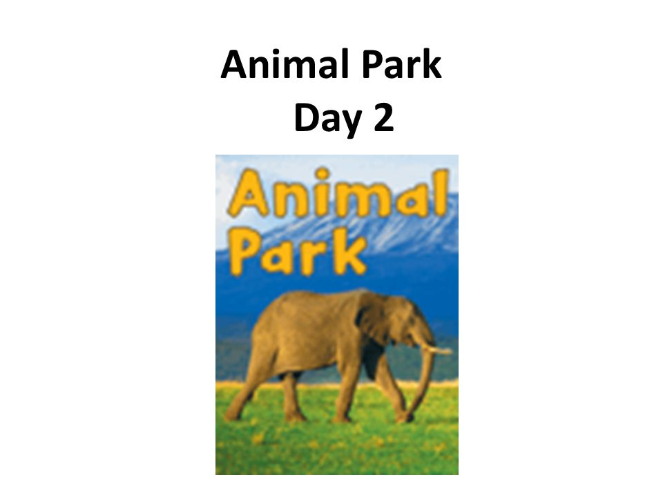 Animal Park Day 2