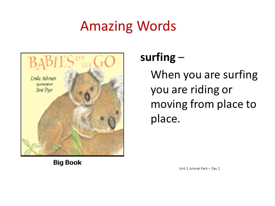 Amazing Words surfing –