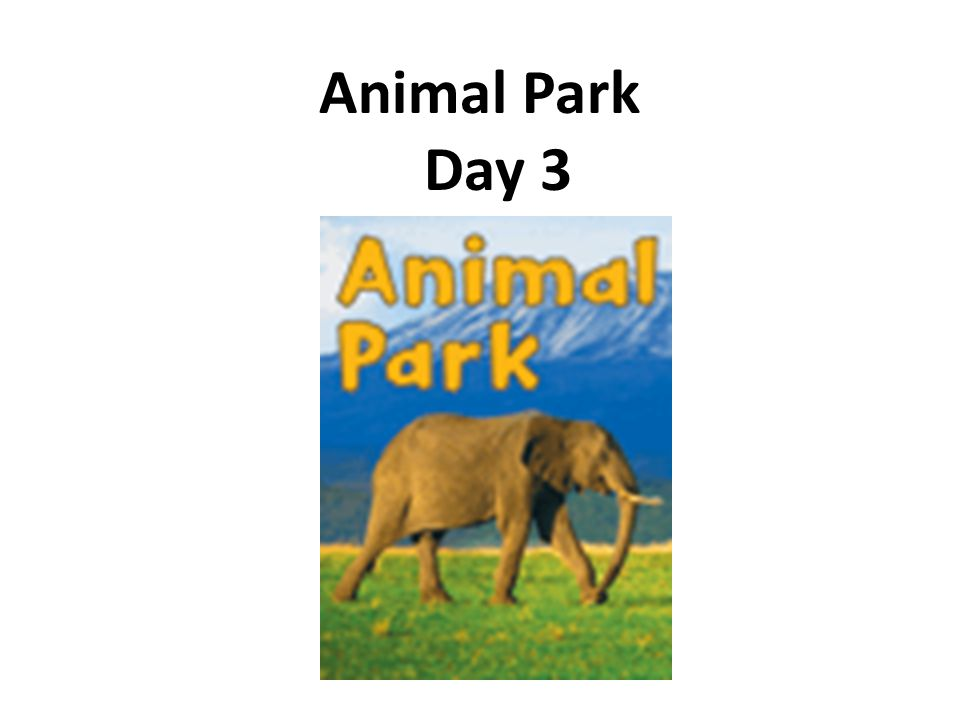 Animal Park Day 3