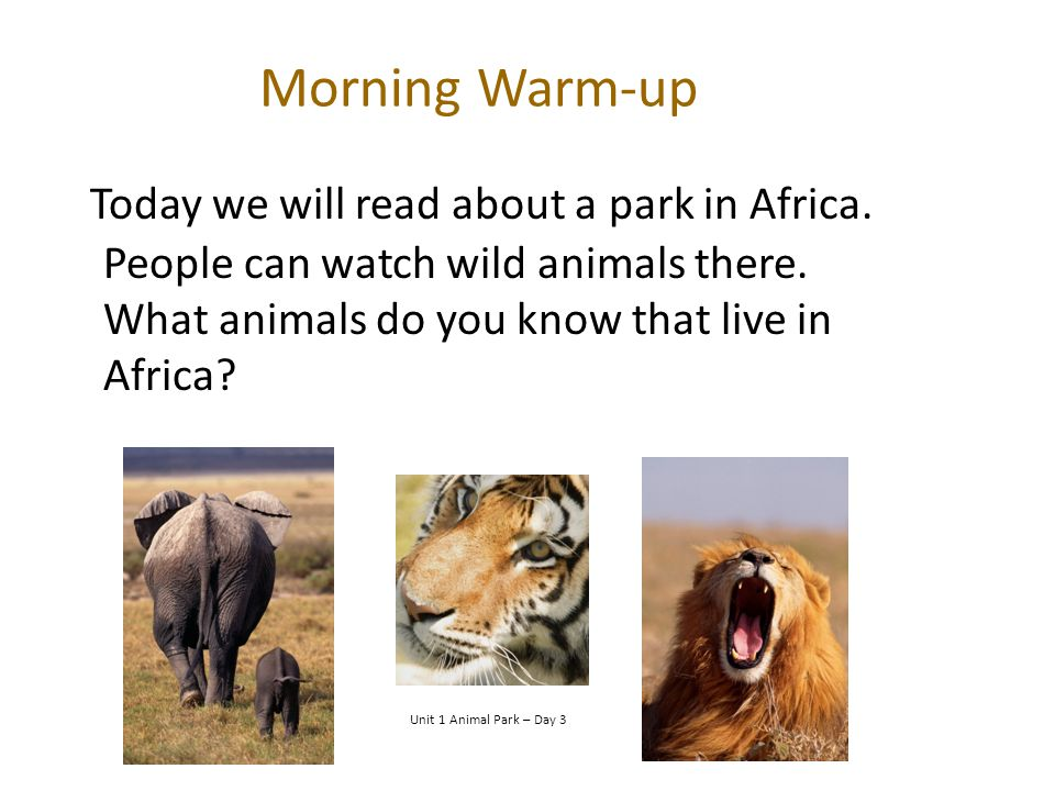 Morning Warm-up Today we will read about a park in Africa. People can watch wild animals there. What animals do you know that live in Africa