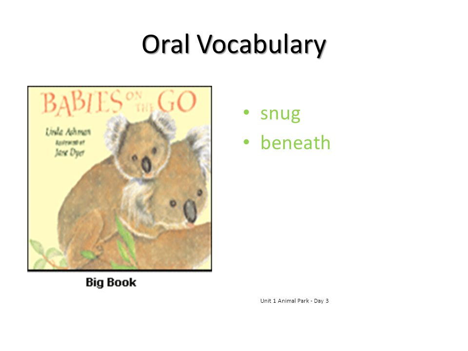 Oral Vocabulary snug beneath Unit 1 Animal Park - Day 3