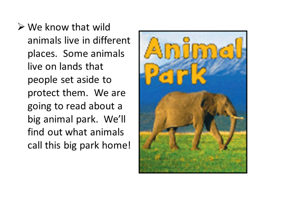 We know that wild animals live in different places