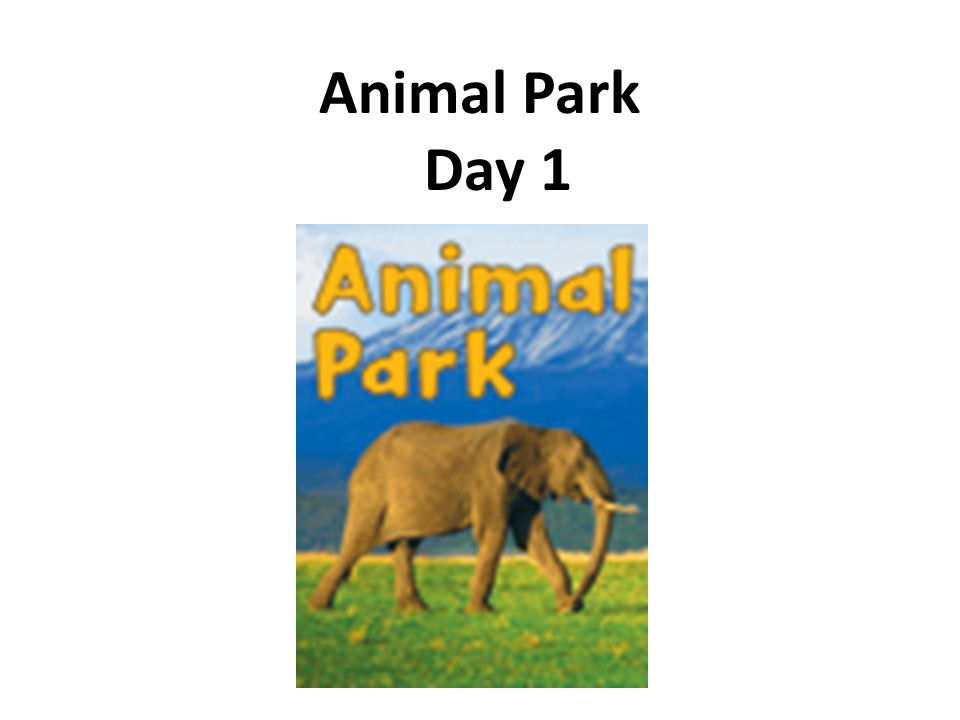 Animal Park Day 1