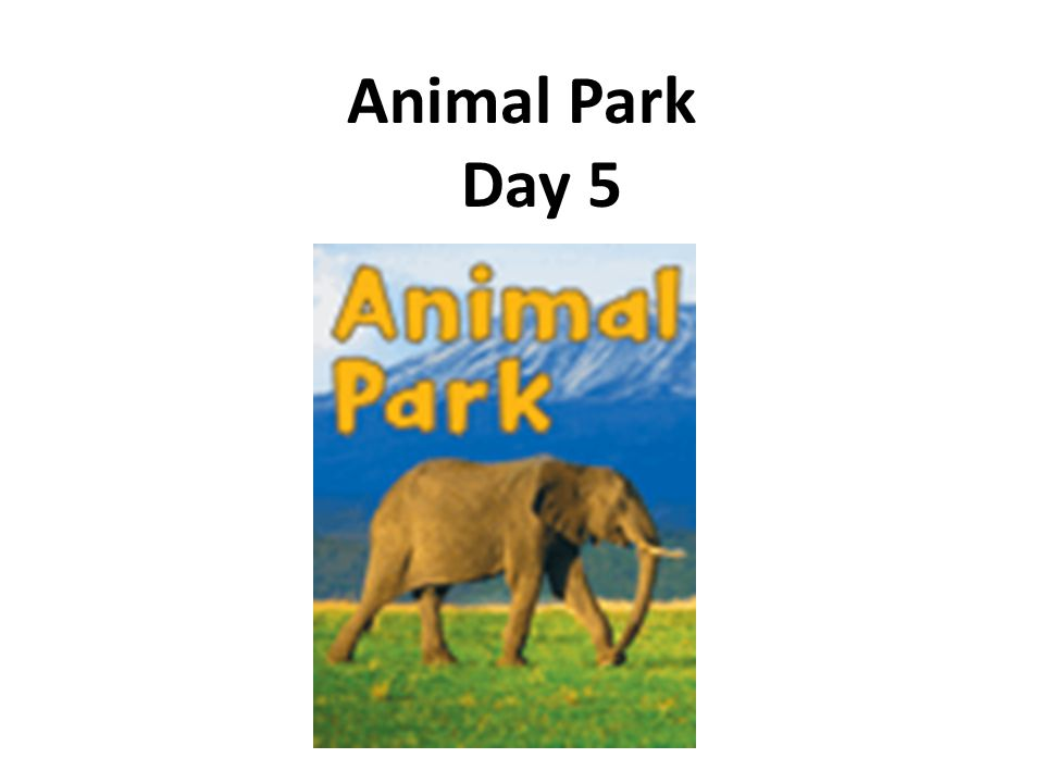 Animal Park Day 5