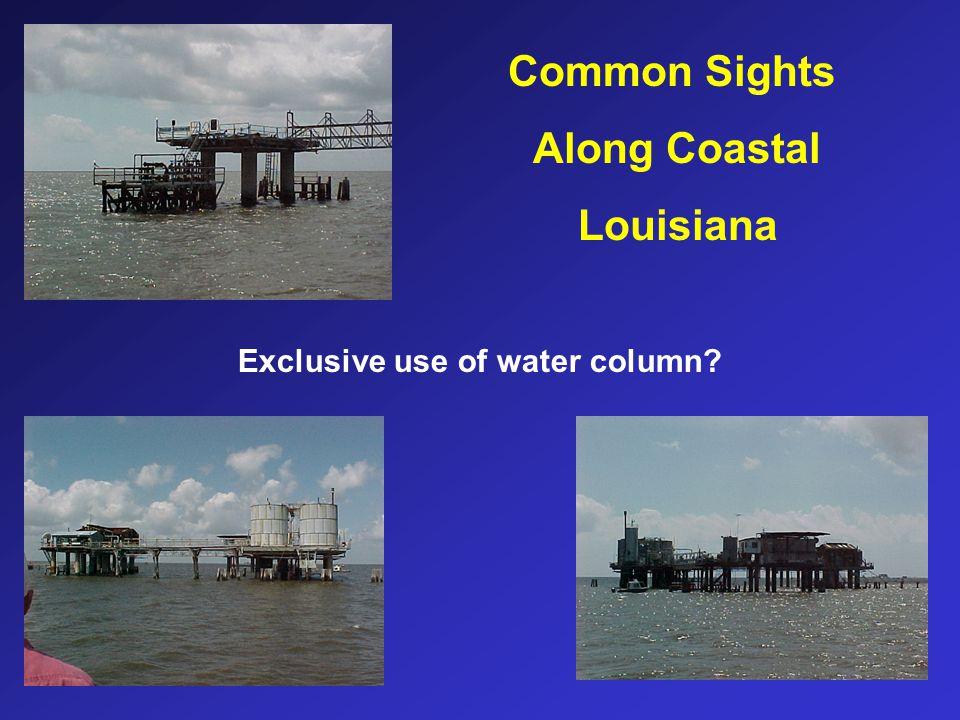 Common Sights Along Coastal Louisiana