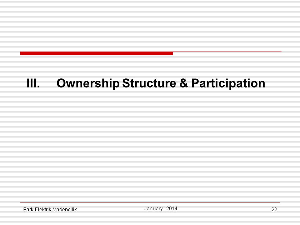 III. Ownership Structure & Participation
