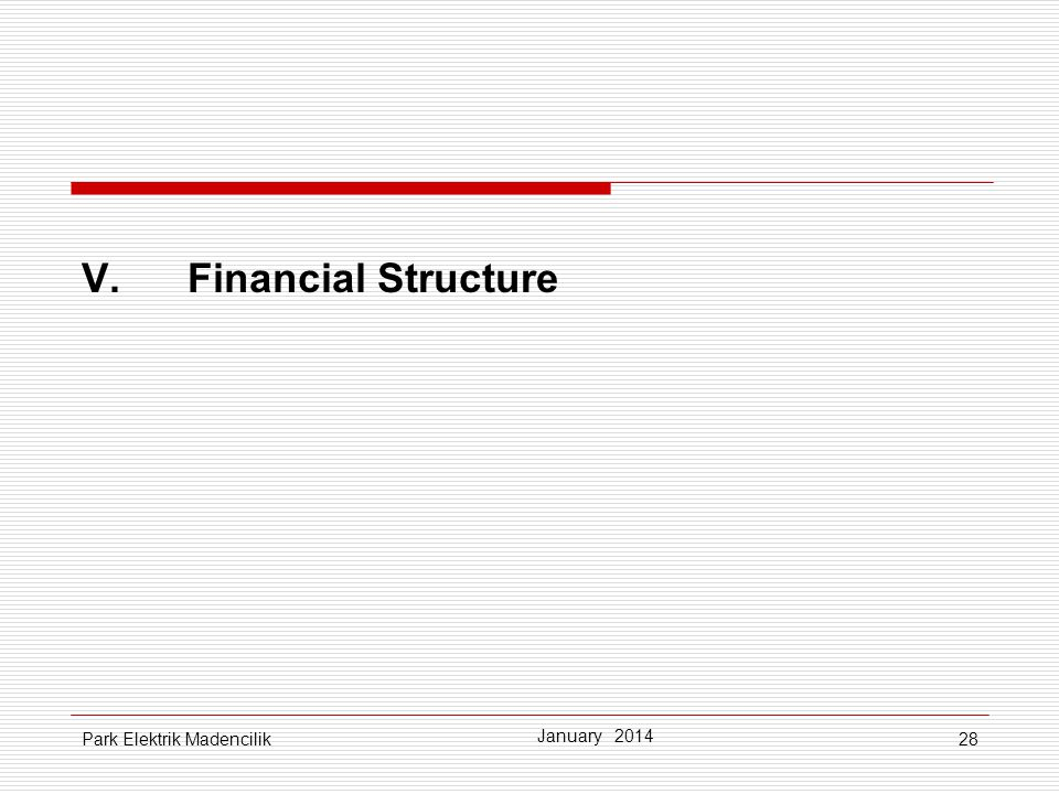 V. Financial Structure Park Elektrik Madencilik January 2014
