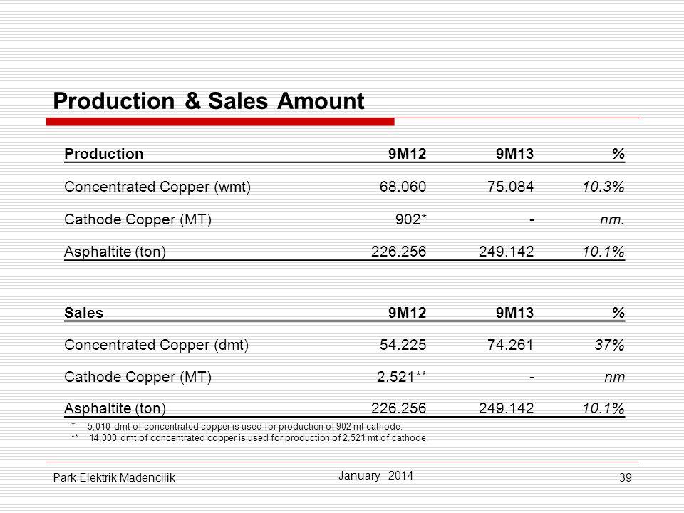 Production & Sales Amount