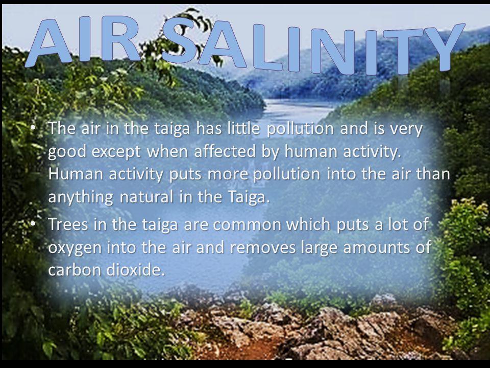 Air Salinity
