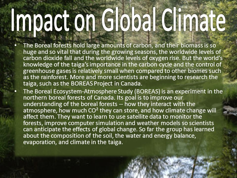 Impact on Global Climate