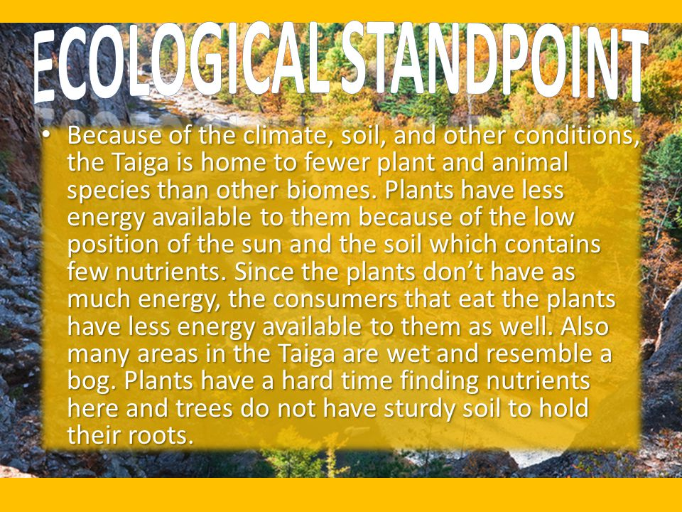 Ecological Standpoint