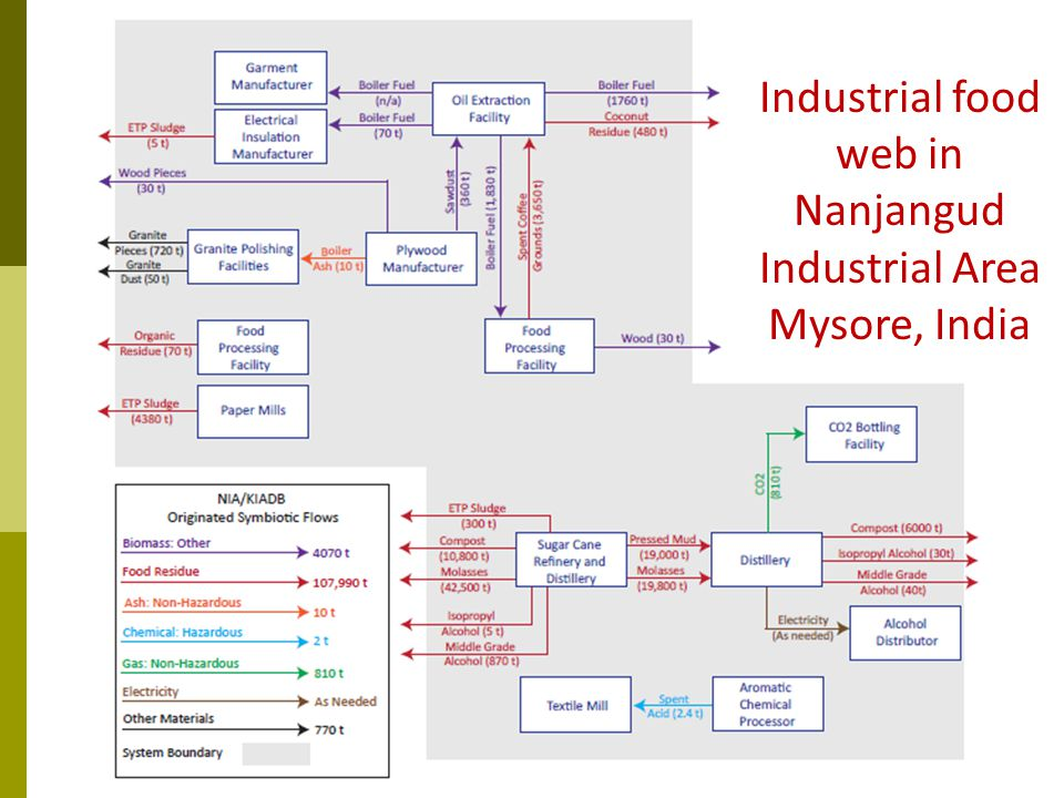 Industrial food web in Nanjangud Industrial Area