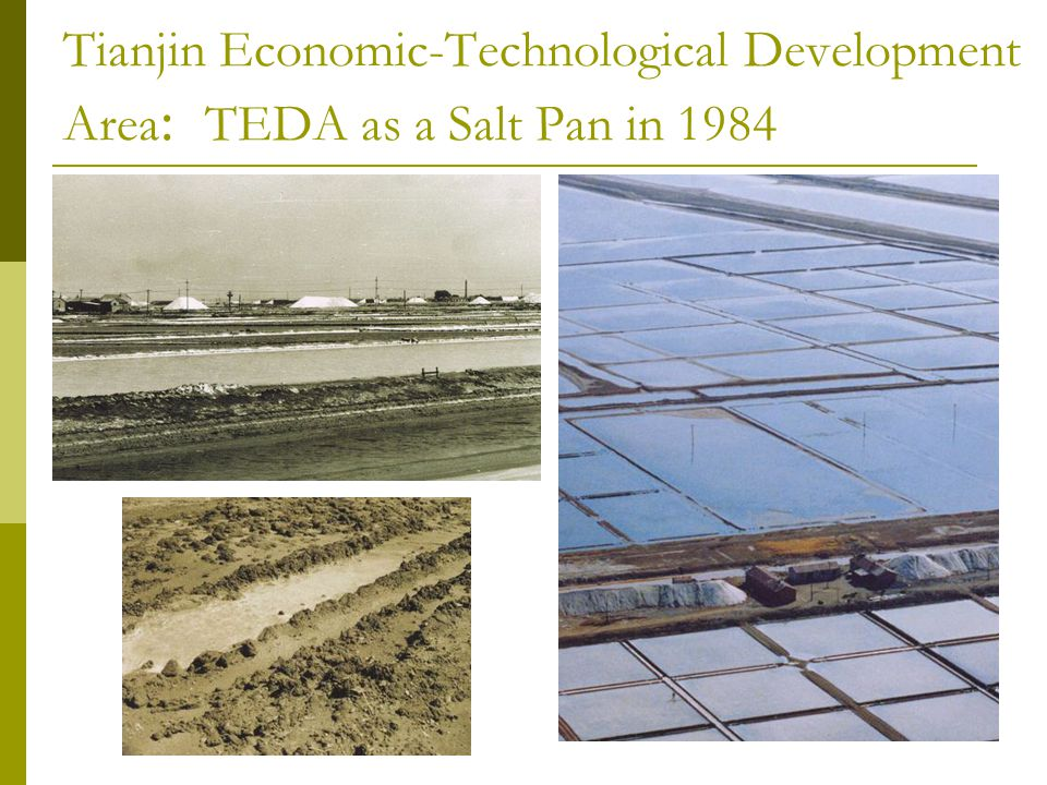 Tianjin Economic-Technological Development Area: TEDA as a Salt Pan in 1984