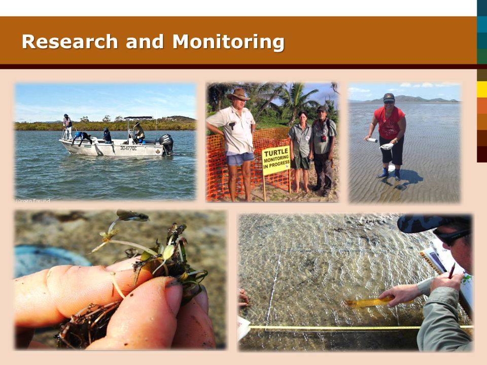 Research and Monitoring