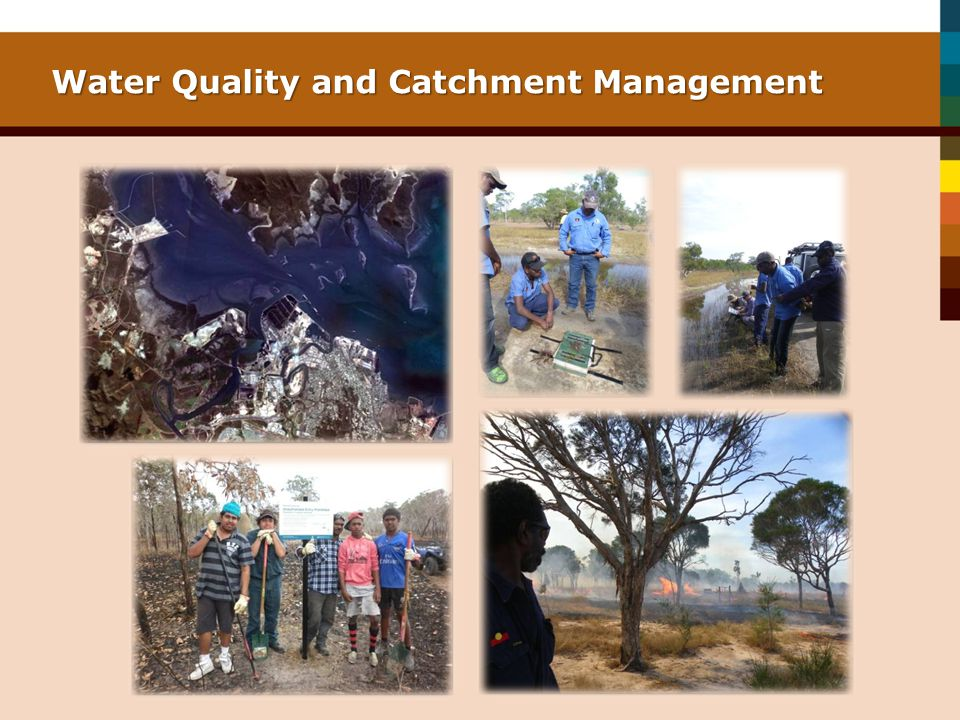 Water Quality and Catchment Management