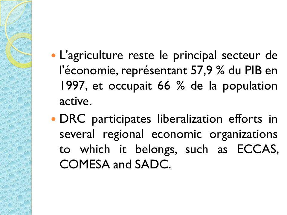 L agriculture reste le principal secteur de l économie, représentant 57,9 % du PIB en 1997, et occupait 66 % de la population active.