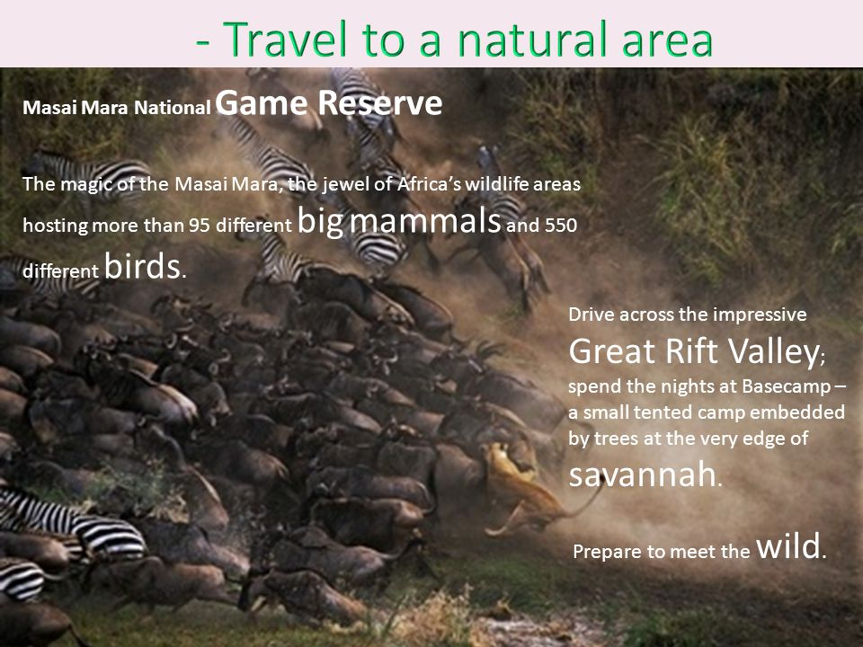 - Travel to a natural area