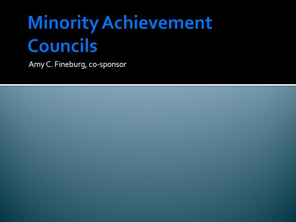 Minority Achievement Councils