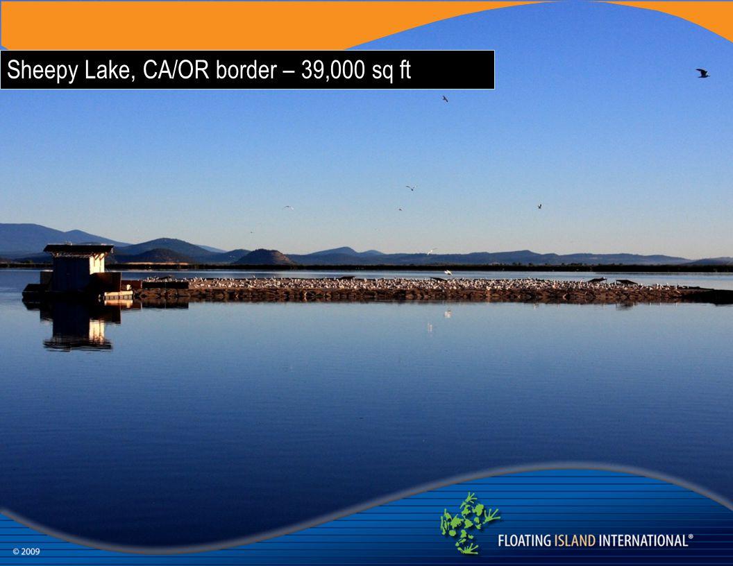 Sheepy Lake, CA/OR border – 39,000 sq ft