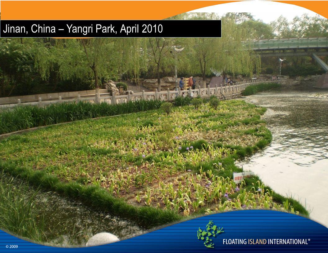 Jinan, China – Yangri Park, April 2010