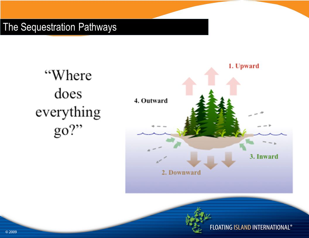 The Sequestration Pathways