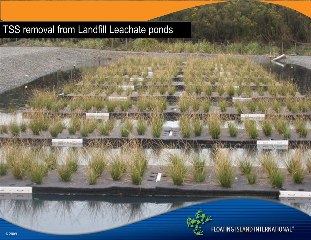 TSS removal from Landfill Leachate ponds