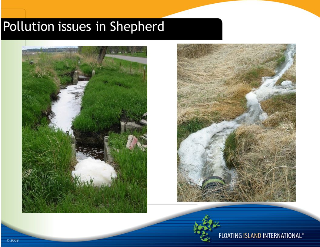 Pollution issues in Shepherd