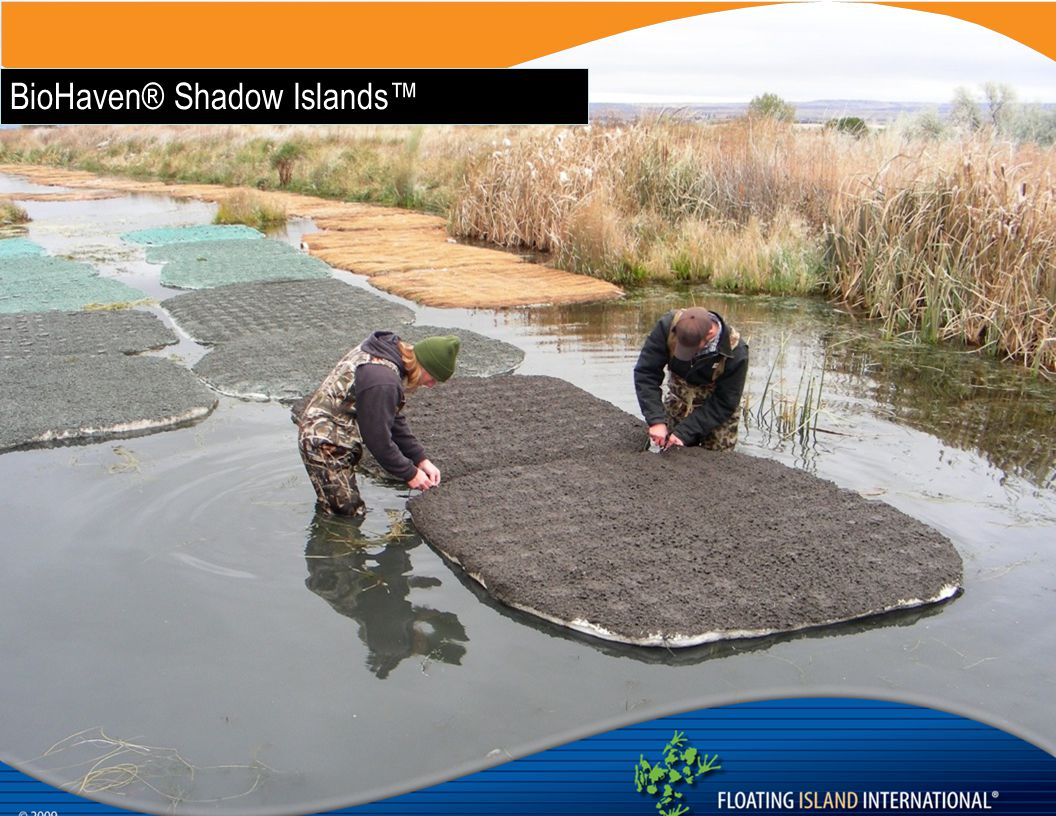 BioHaven® Shadow Islands™