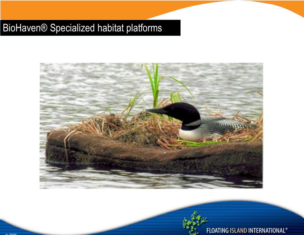 BioHaven® Specialized habitat platforms
