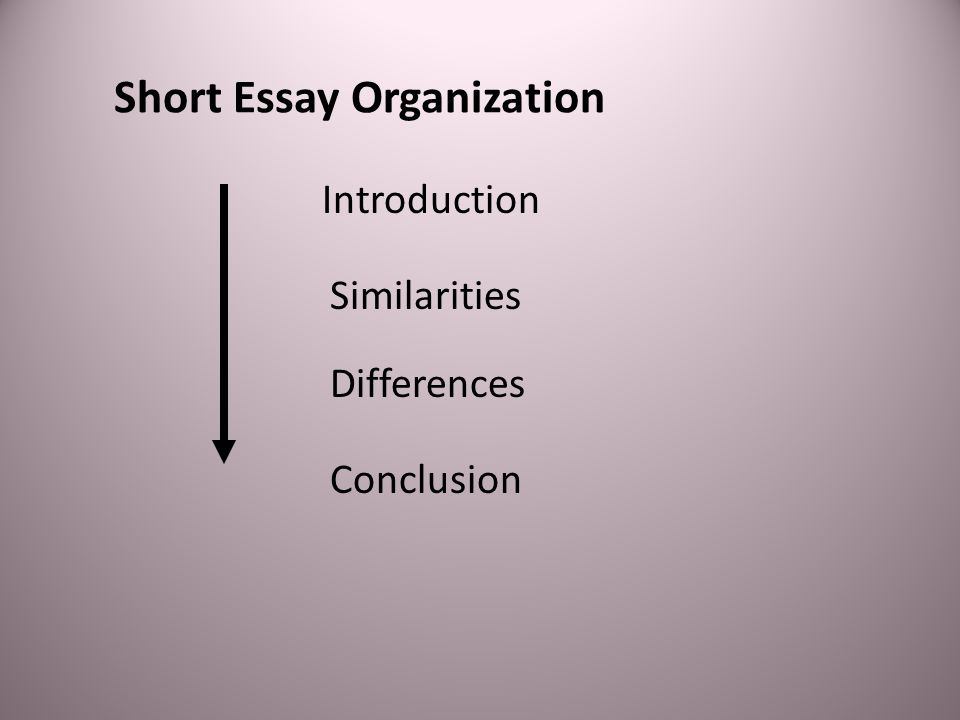 Short Essay Organization