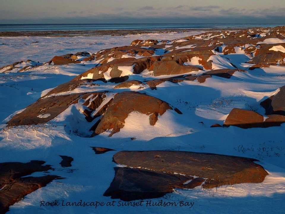 Rock Landscape at Sunset Hudson Bay
