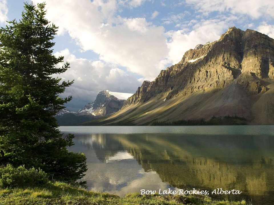 Bow Lake Rockies, Alberta