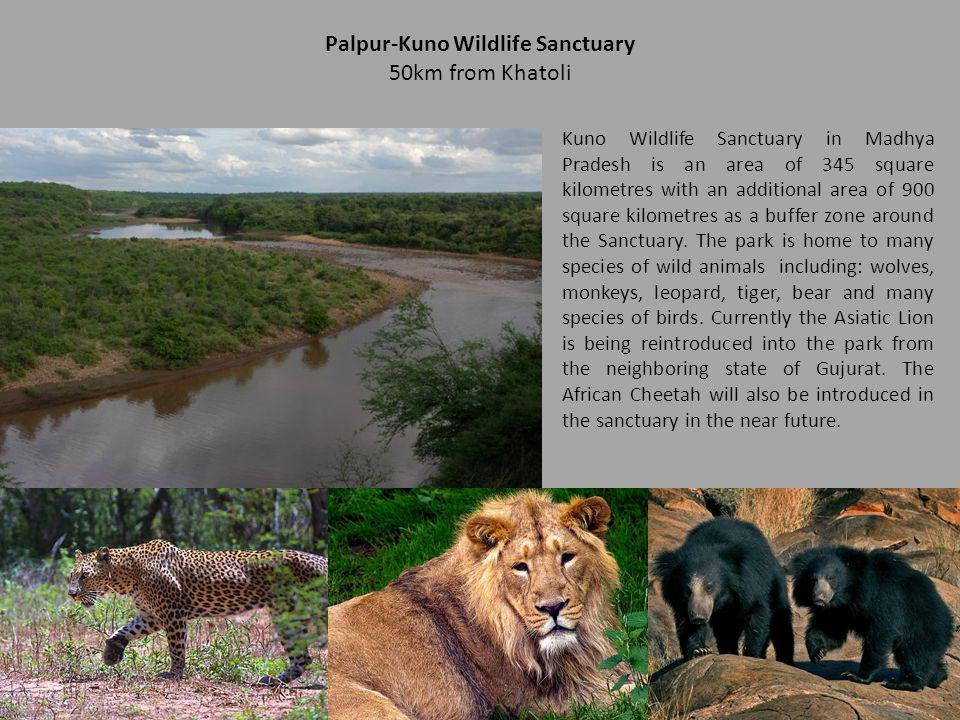 Palpur-Kuno Wildlife Sanctuary
