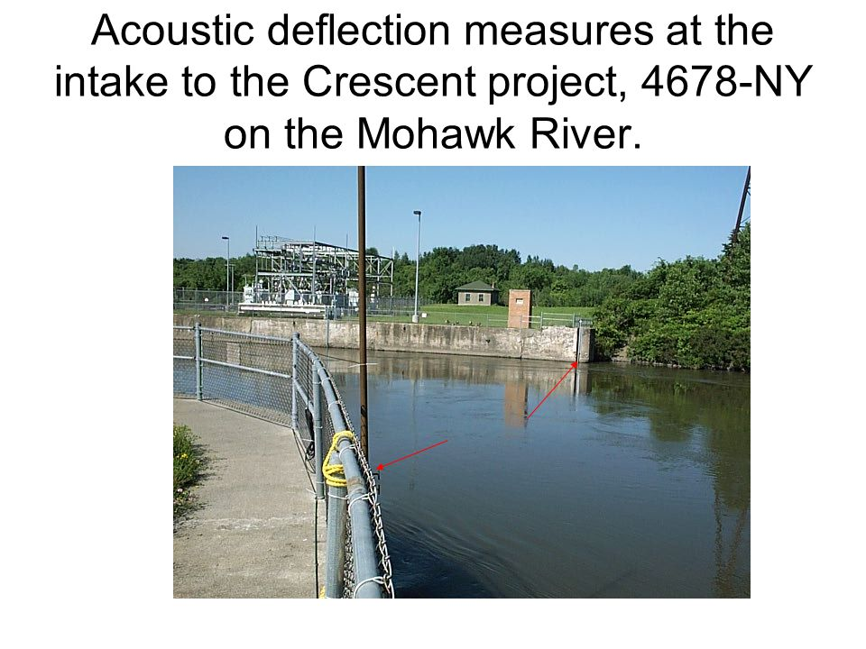 Acoustic deflection measures at the intake to the Crescent project, 4678-NY on the Mohawk River.