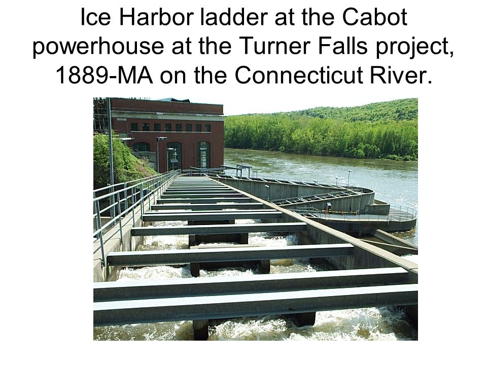 Ice Harbor ladder at the Cabot powerhouse at the Turner Falls project, 1889-MA on the Connecticut River.