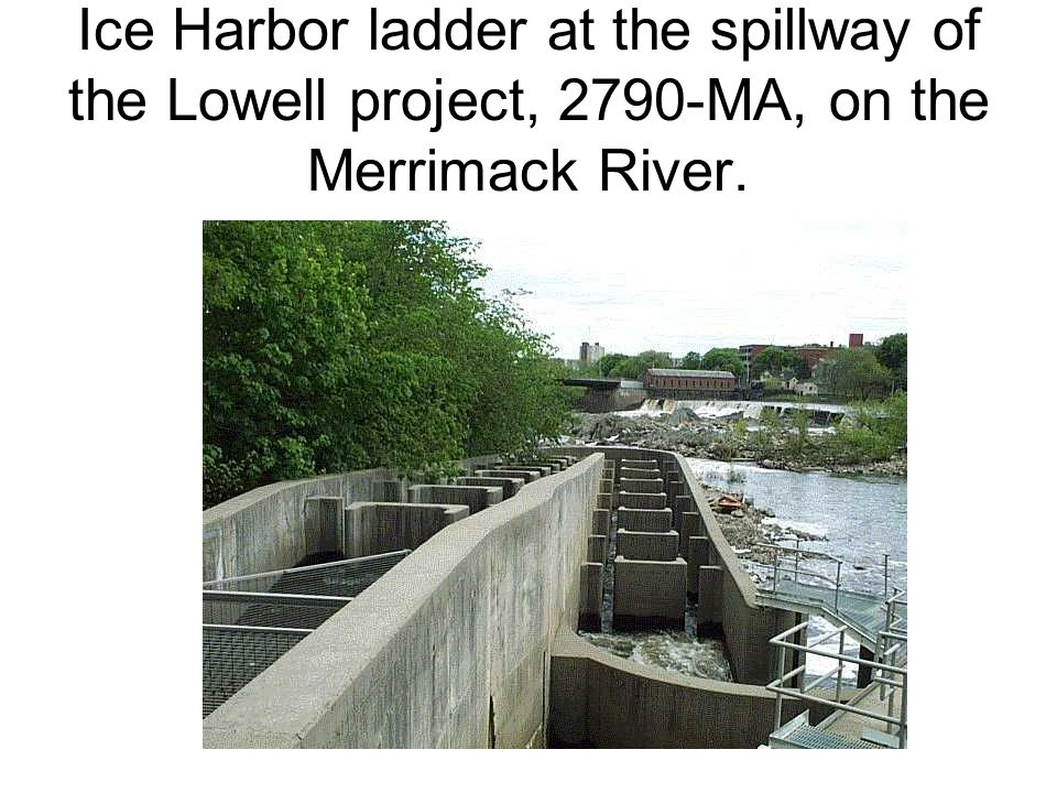 Ice Harbor ladder at the spillway of the Lowell project, 2790-MA, on the Merrimack River.