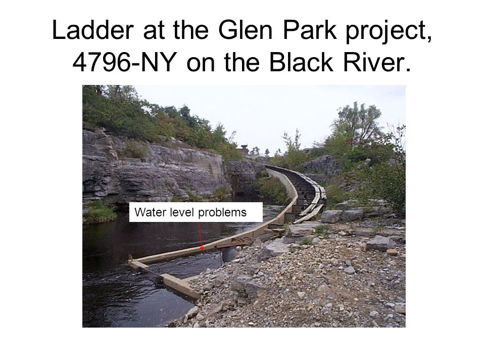 Ladder at the Glen Park project, 4796-NY on the Black River.