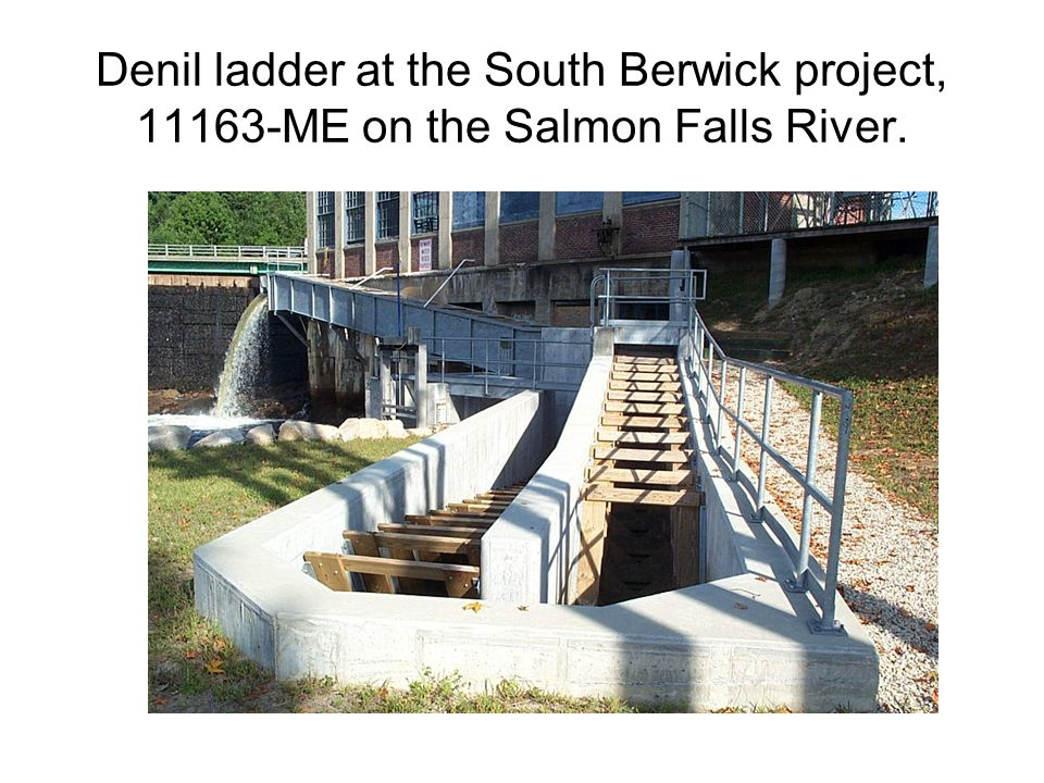 Denil ladder at the South Berwick project, ME on the Salmon Falls River.