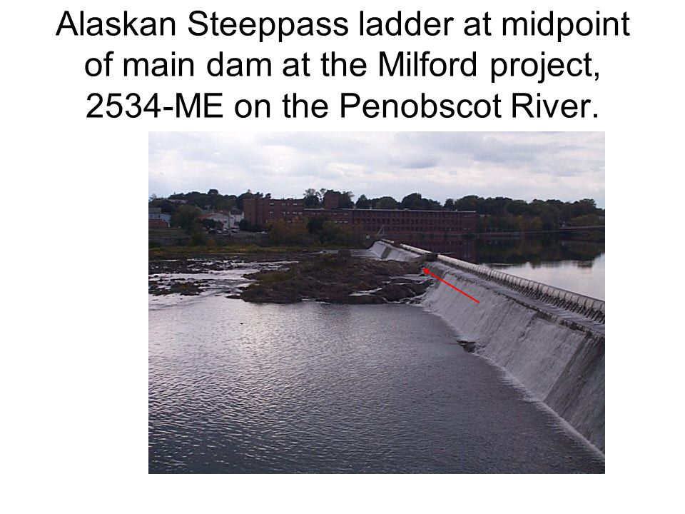 Alaskan Steeppass ladder at midpoint of main dam at the Milford project, 2534-ME on the Penobscot River.