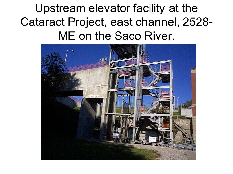 Upstream elevator facility at the Cataract Project, east channel, 2528-ME on the Saco River.