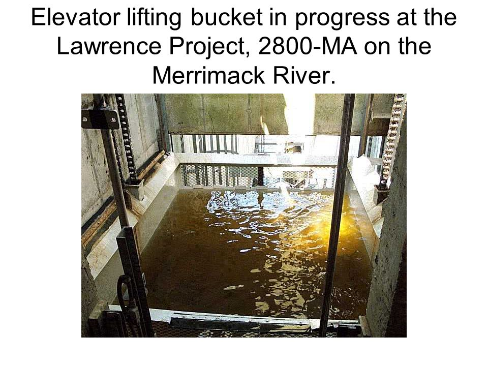 Elevator lifting bucket in progress at the Lawrence Project, 2800-MA on the Merrimack River.