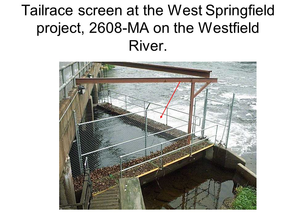 Tailrace screen at the West Springfield project, 2608-MA on the Westfield River.