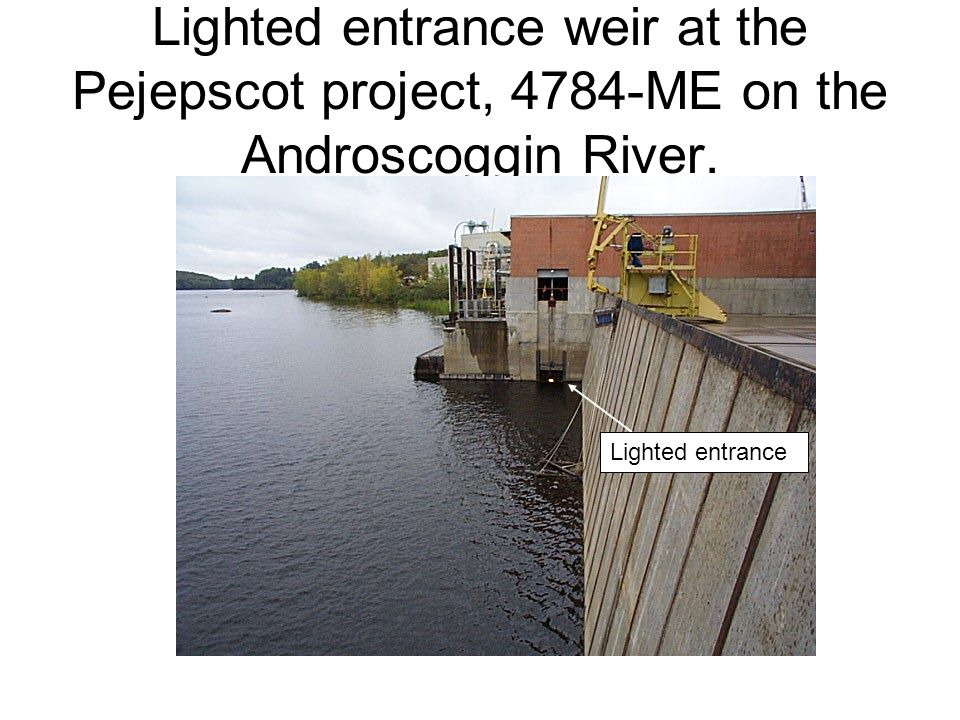 Lighted entrance weir at the Pejepscot project, 4784-ME on the Androscoggin River.