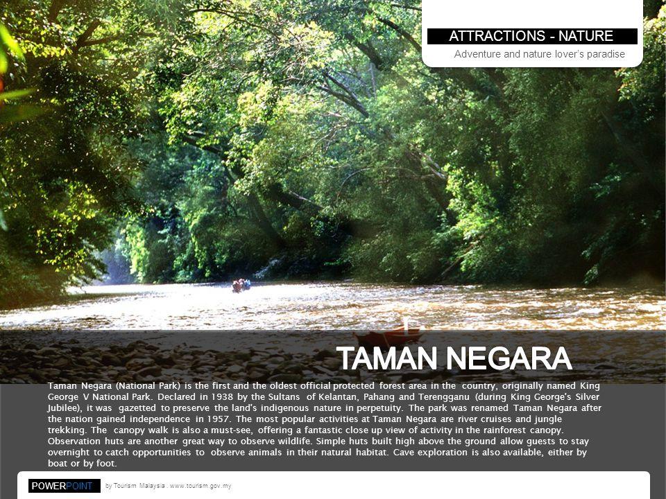 TAMAN NEGARA ATTRACTIONS - NATURE