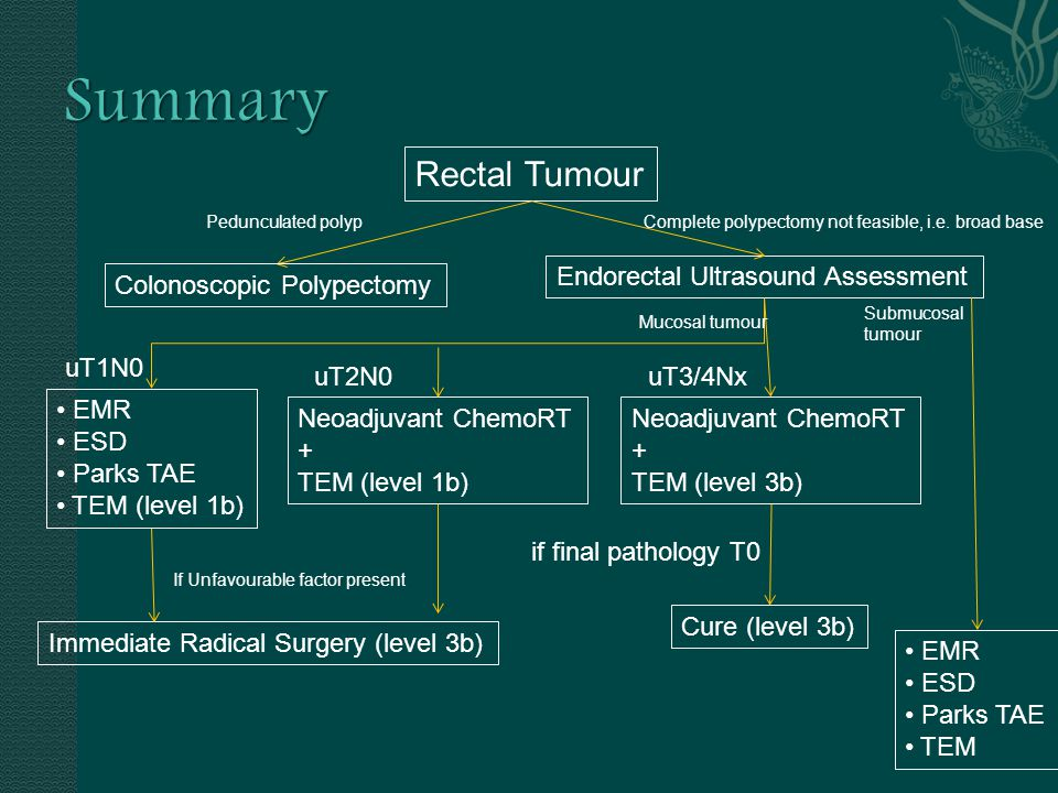Summary Rectal Tumour Endorectal Ultrasound Assessment