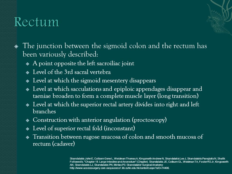 Rectum The junction between the sigmoid colon and the rectum has been variously described: A point opposite the left sacroiliac joint.