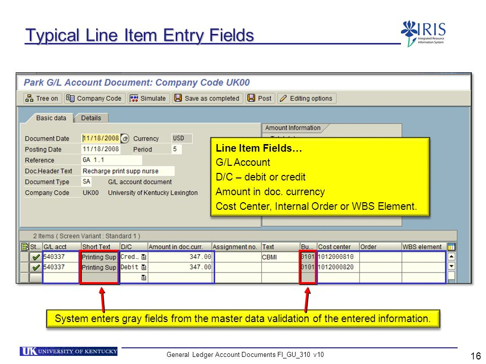 Typical Line Item Entry Fields